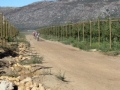 leighs-cycle-centre-absa-cape-epic-11-4